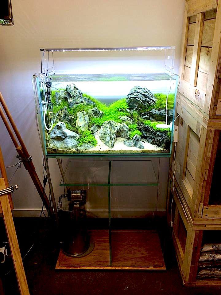 ada setup iwagumi scape planted aquaria inspiration. Black Bedroom Furniture Sets. Home Design Ideas