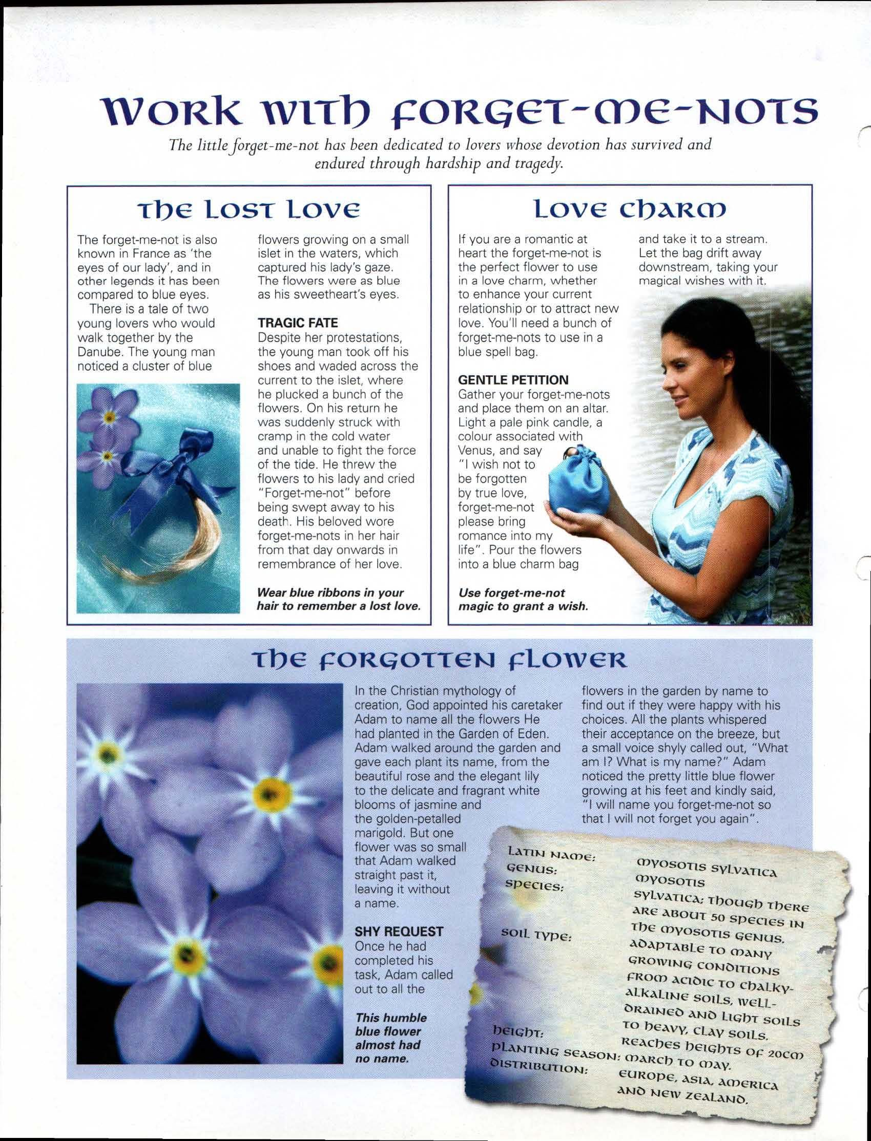 Work with Forget-Me-Nots | My Magickal Path | Wiccan crafts, Wiccan