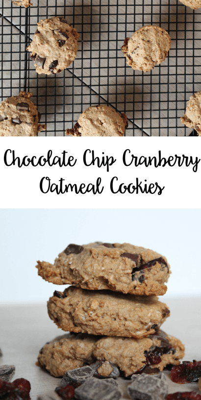 Chocolate Chip Cranberry Oatmeal Cookies | Dairy Free | Lean, Clean, & Brie