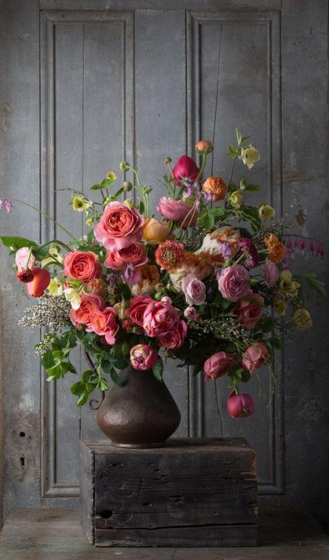 Amaryllis Mocca Google Search Flower Power Pinterest Fleurs