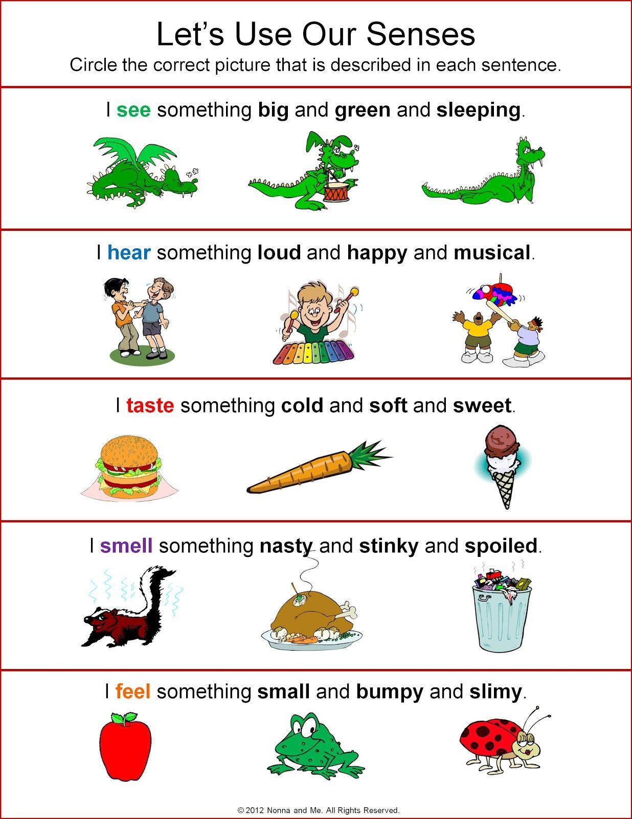 Five Senses Worksheets For Kindergarten In