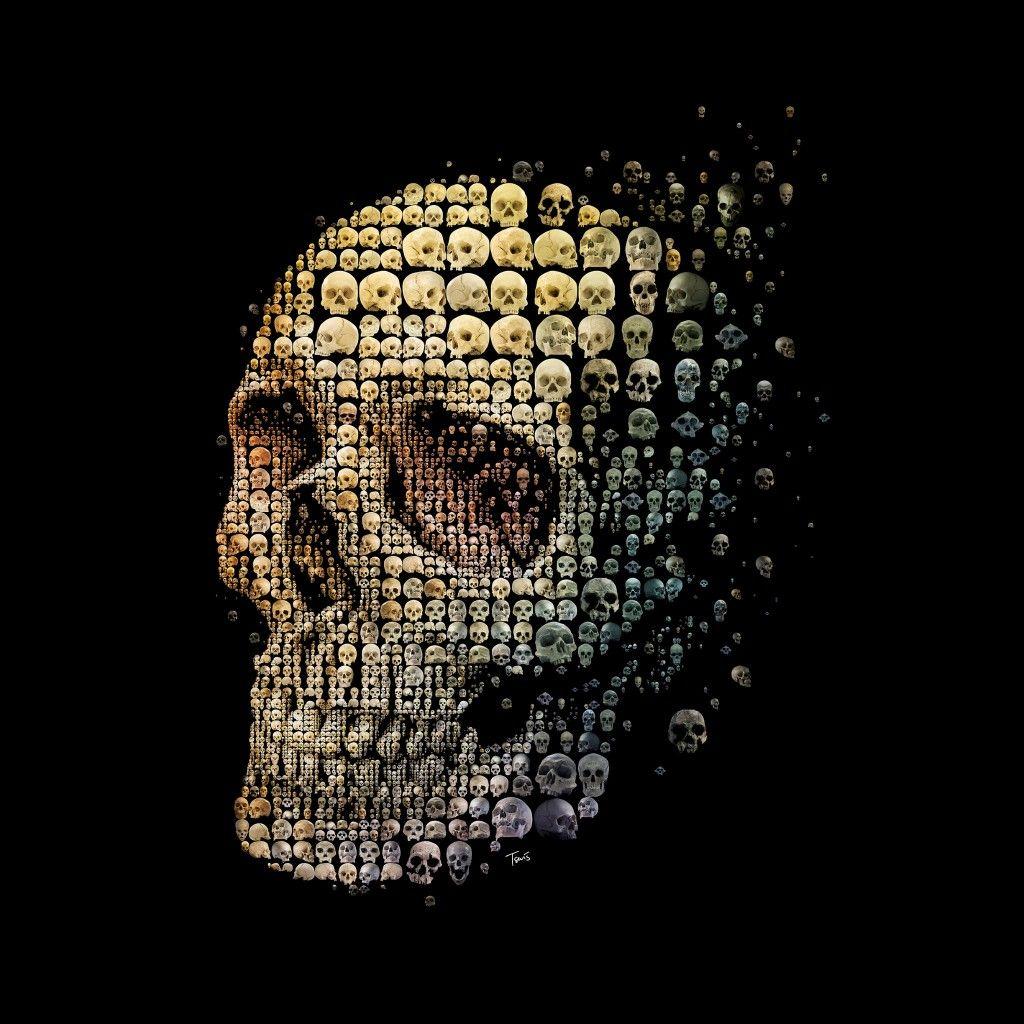 Skull Evolution Cool #iPad #Wallpaper HD