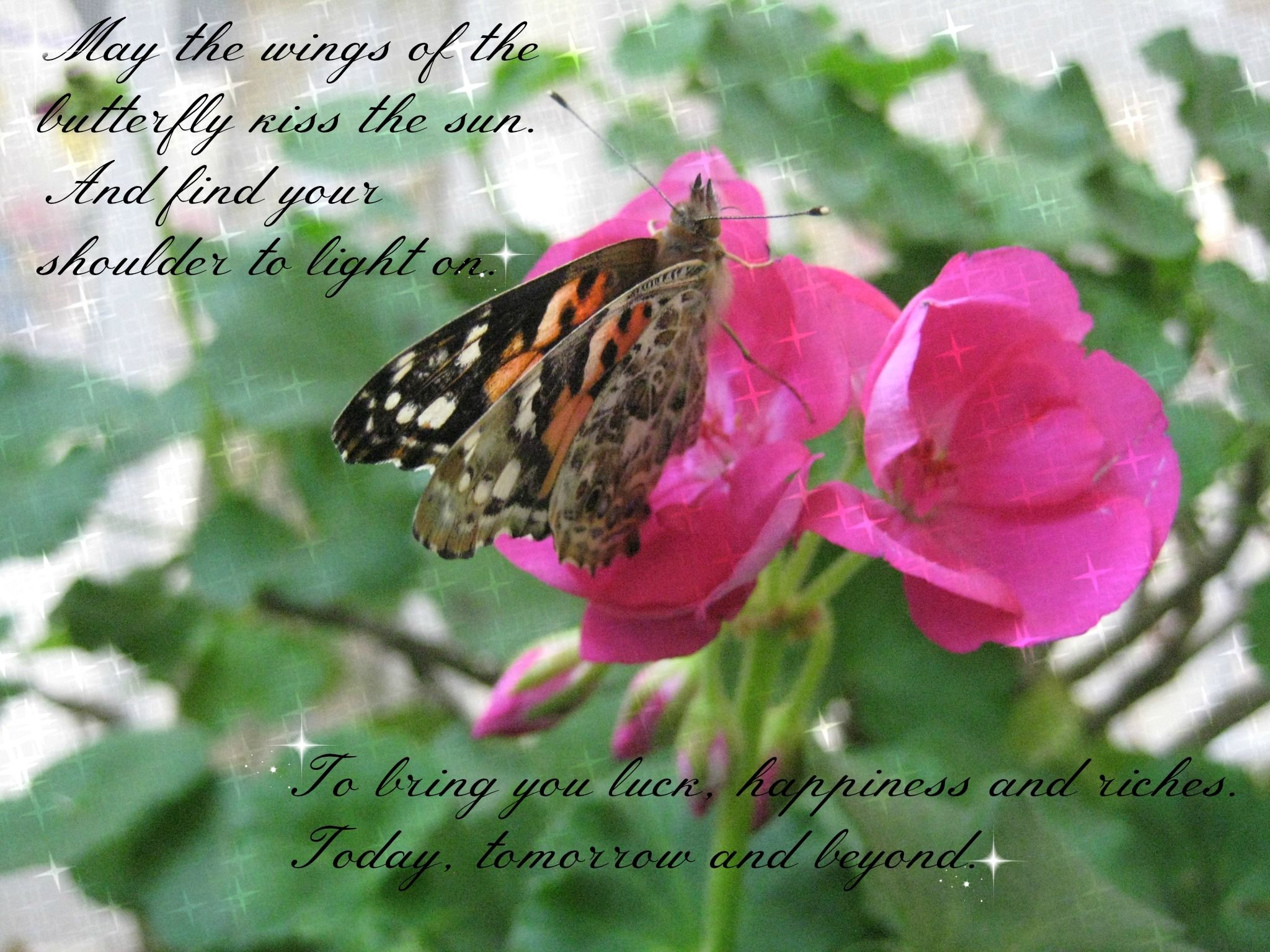 Butterfly Mom May the wings of the butterfly kiss the