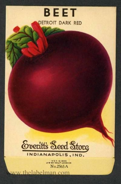 Everitt S Seed Store Beet 2565 A Vintage Seed Packet Seed Packets Vintage Seed Packets Vegetable Seeds Packets