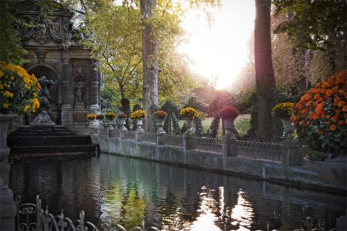 Gardens of Luxembourg in Paris, France. I think it was at 6am...