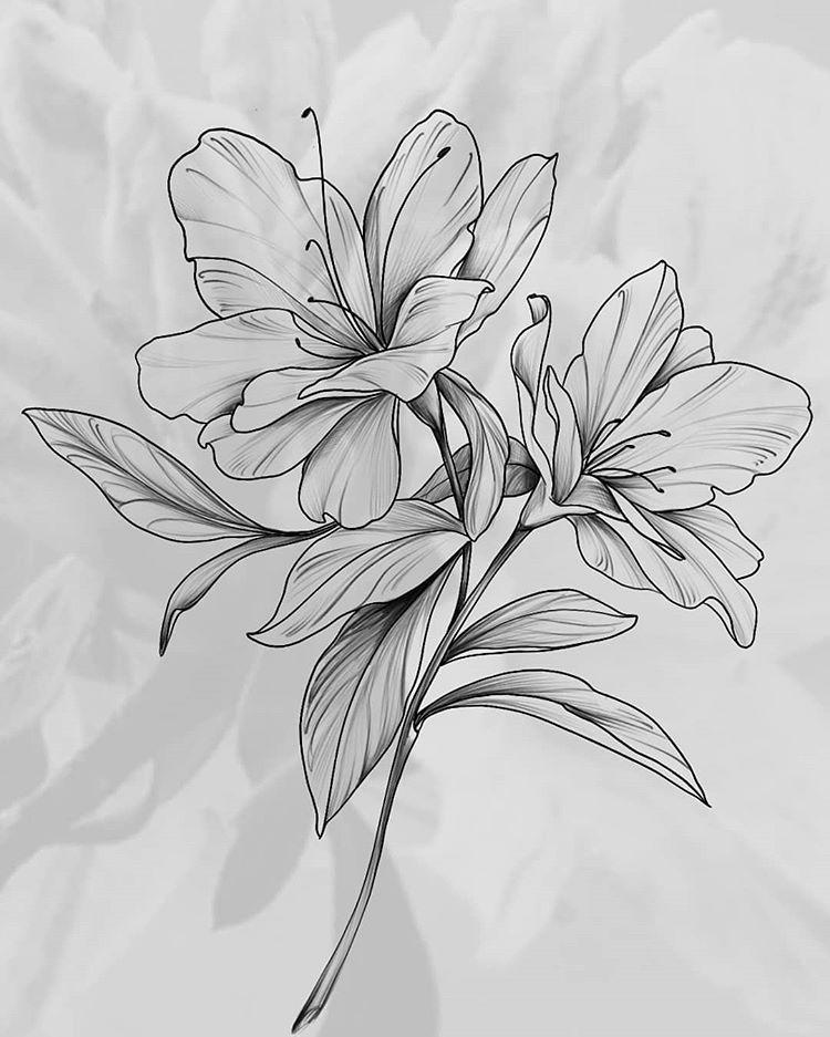 Wzor Tatuazu Kwiat Monika Wypozyczalnia Sprzetu Rehabilitacyjnego Tatuaze Rose Tattoos Rose Drawing Tattoo Tattoos
