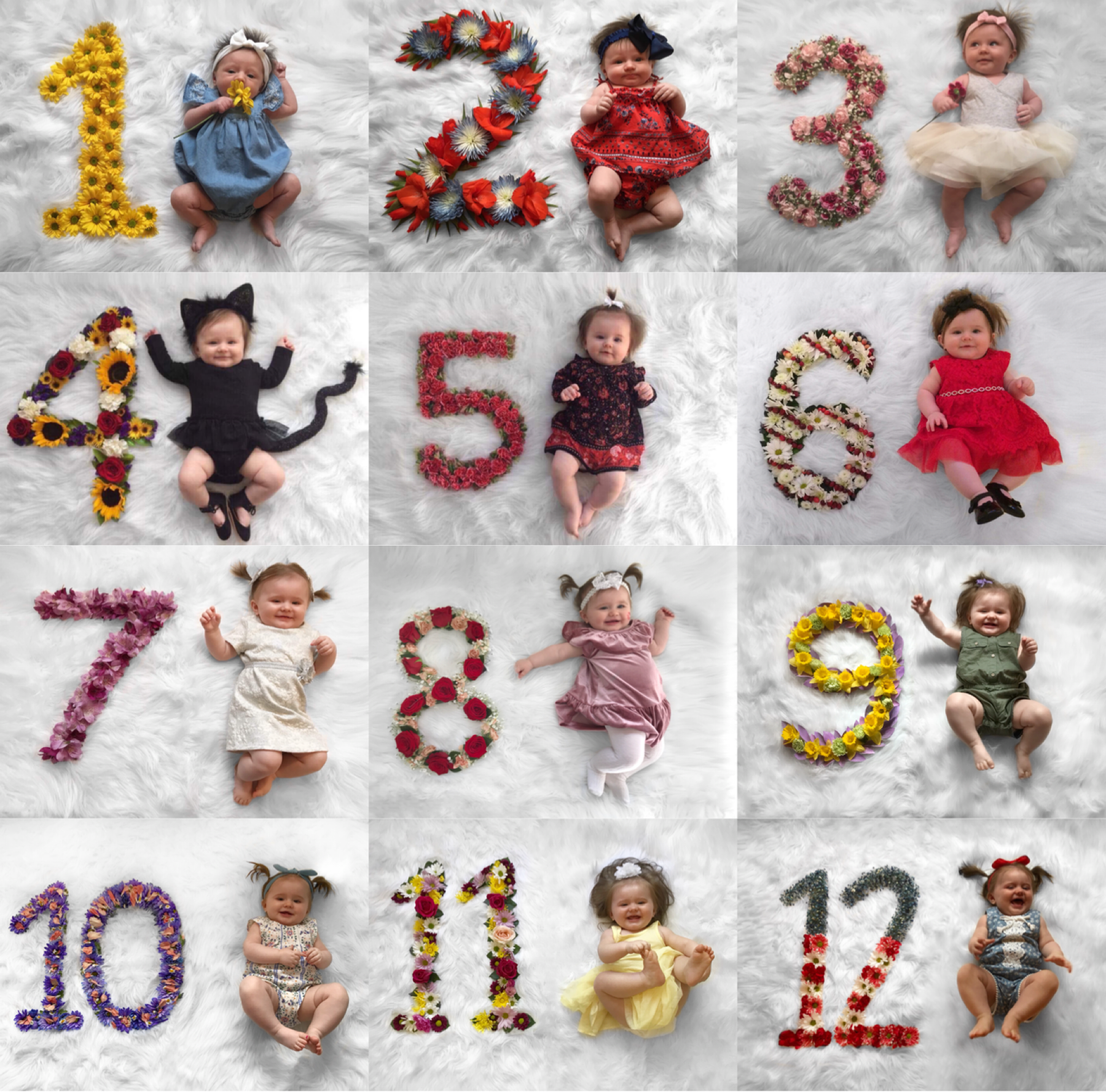 Monthly Baby Photos Flower Numbers So Cute Credits Macy Marshall Monthly Baby Photos Baby Month By Month Baby Girl Newborn Photos