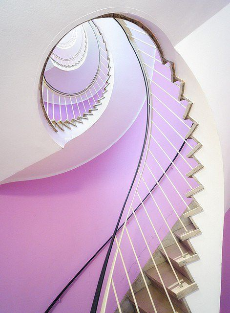 lavender spiral