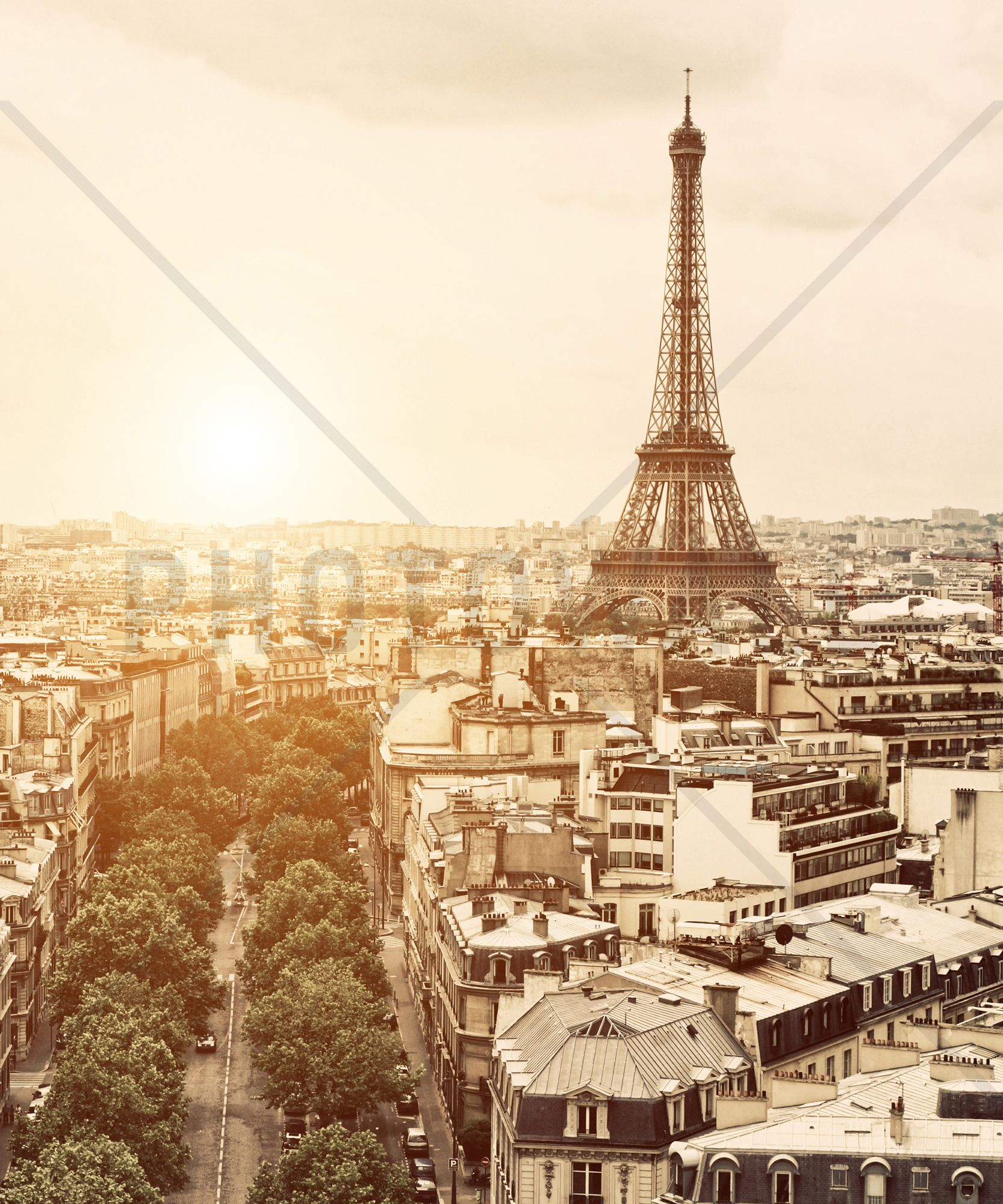 Paris Eiffel Tower Wall Mural & Photo Wallpaper