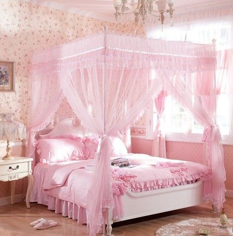 Pin By Bella Jones On Wants Are Needs Girls Bed Canopy Pink