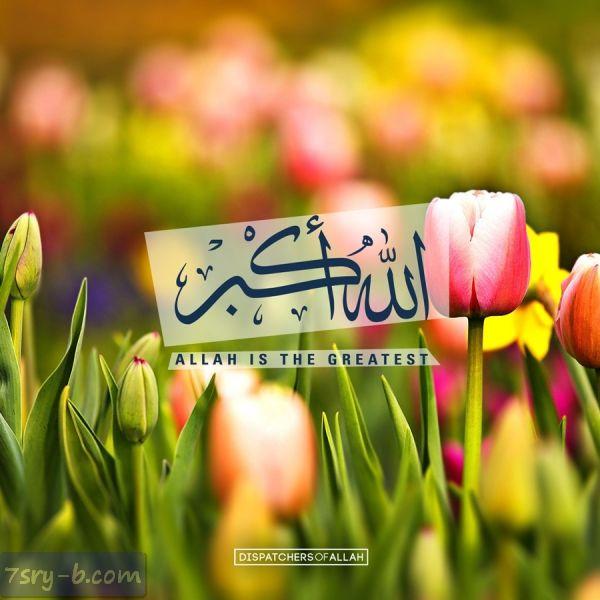 صور الله أكبر صور وخلفيات مكتوب عليها الله أكبر خلفيات الله أكبر Allah Love Islam Allah