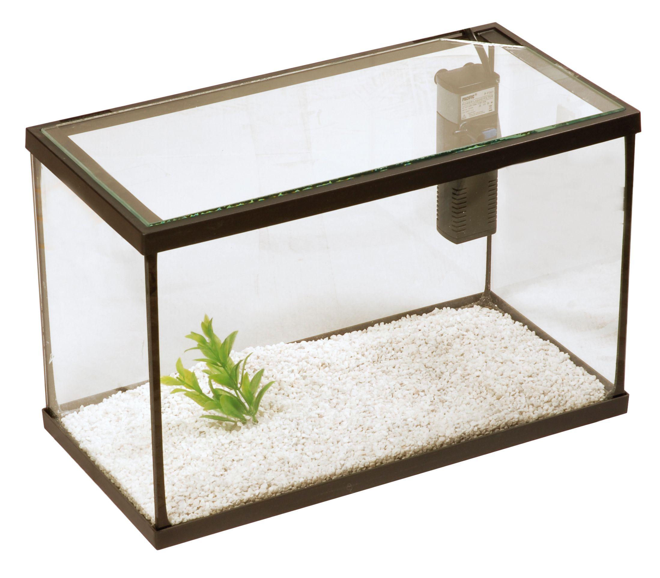 62032bc6082130f8a7a1160815fda5e0 Frais De Aquarium A tortue Concept