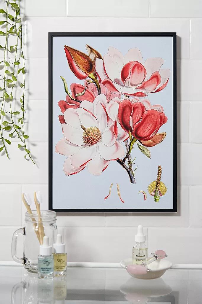 Pink Orchid Wall Art Print
