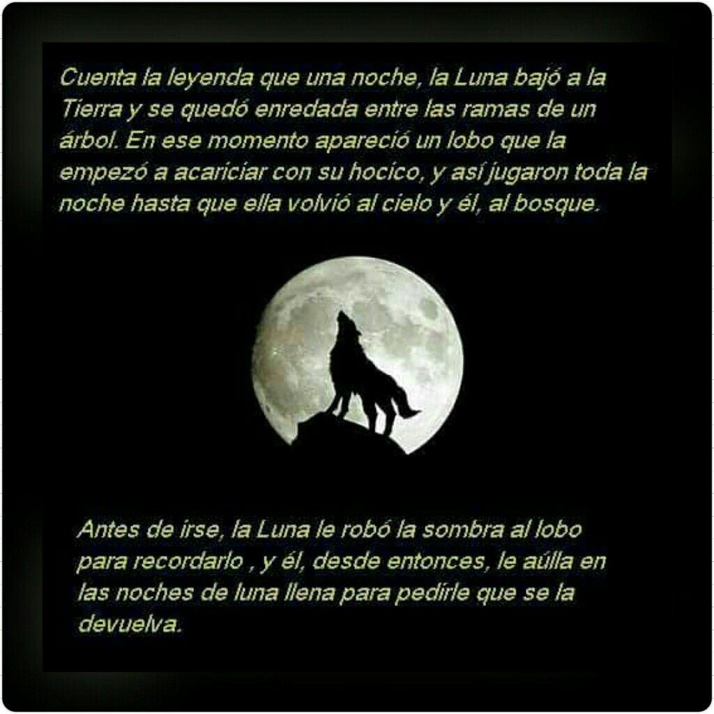 Cuenta La Leyenda Frases De Lobos Lobos Enamorados Y Lobos