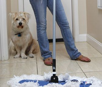 products to stop dogs from peeing in the house