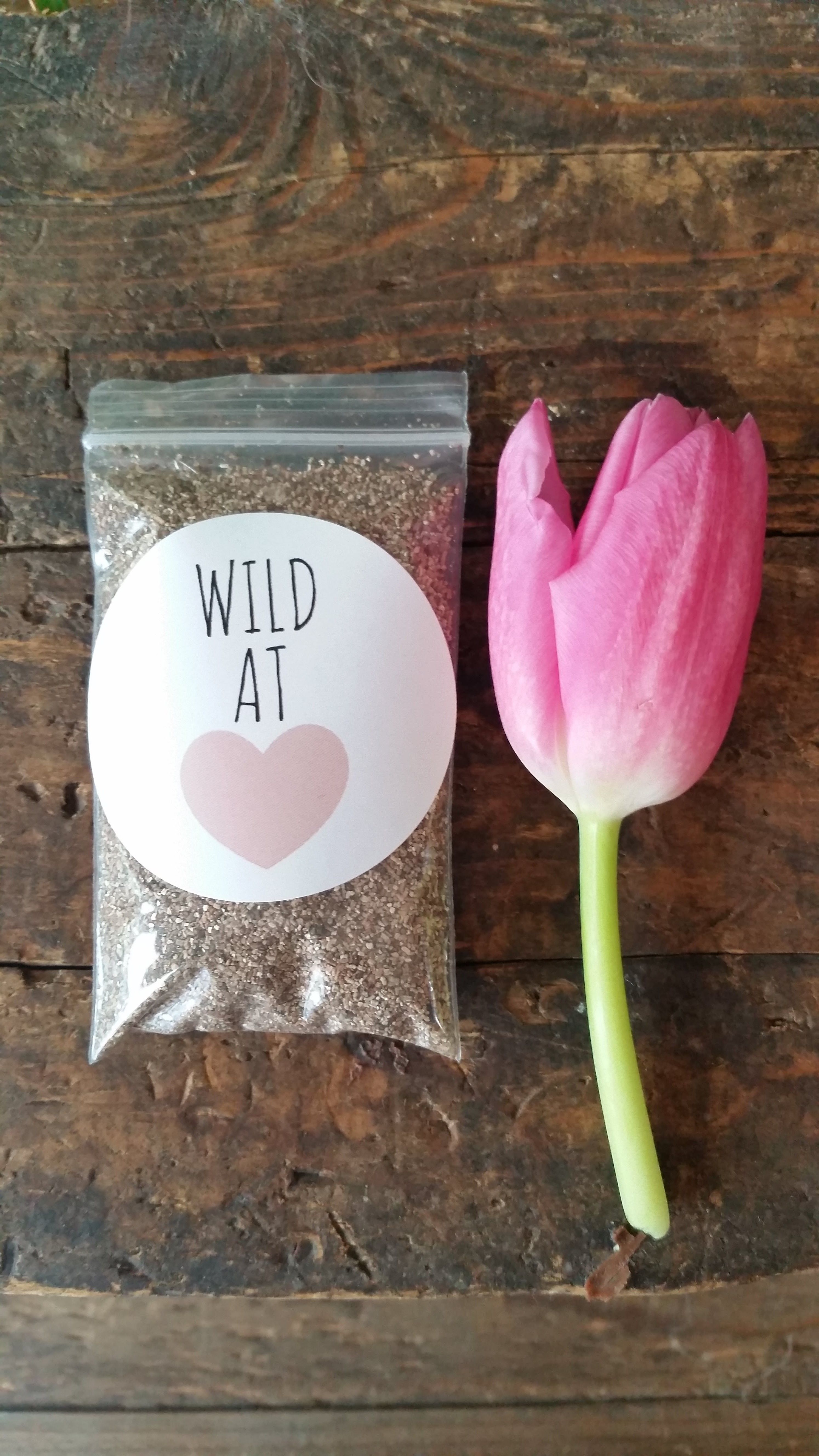 Party Favors Wild At Heart First Birthday Wildflower Seeds Adult Shes A One Spring Gift