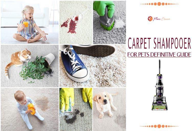 Top 12 Best Carpet Shampooers For Pet Feb 2020 Updated Best Carpet Carpet Shampooers Carpet