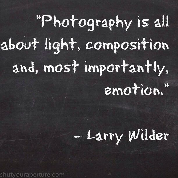 Inspirational Photography Quotes Entrancing Inspirational Photography Quotes » Shutyouraperture  Photography