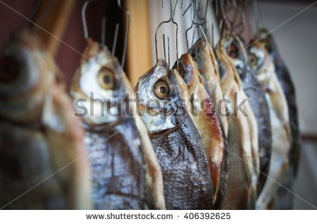dried river fish hanging on a rope - stock photo