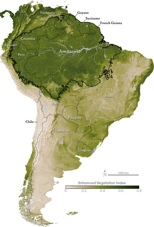 south america and the amazon  vegetation index  by nasa