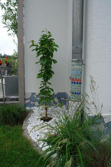 Mosaik an der Mauer - Seite 1 - Gartengestaltung - Mein schöner Garten online #dekoeingangsbereichaussen