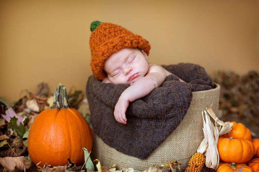 Thanksgiving newborn photography rena christine photography london ontario newborn photography