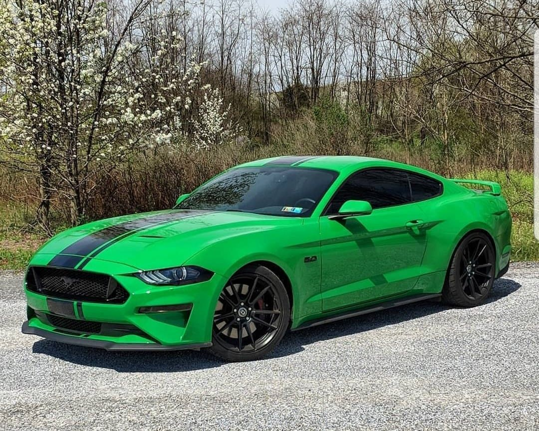 Pin by ray wilkins on mustangs ford mustang ford bmw