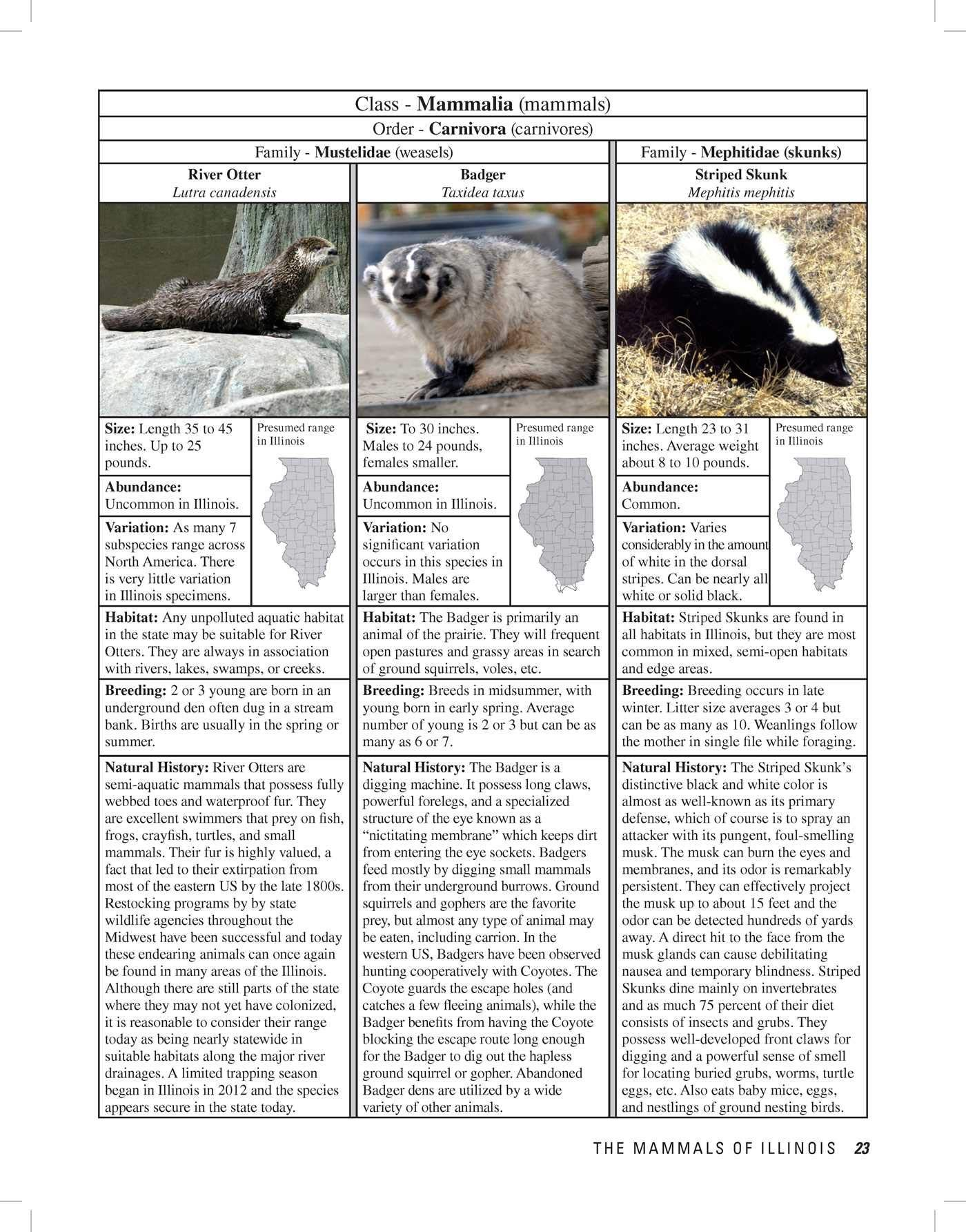 The Illinois Wildlife Encyclopedia An Illustrated Guide