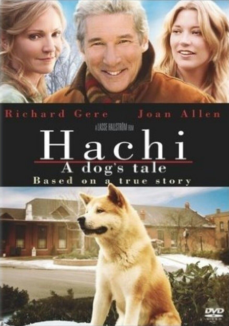 Hachi a dogs tale the most beautiful movie i have