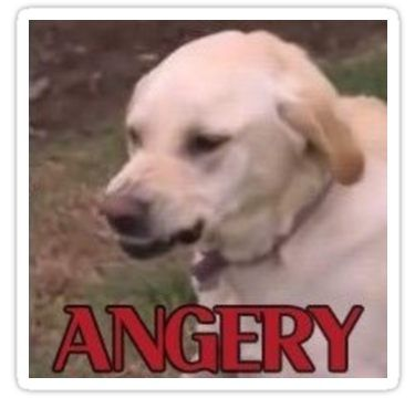 ANGERY DOGGO Sticker