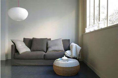 Déco salon gris - Idées couleur et photos pour su0027inspirer Salons