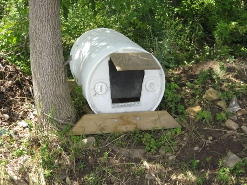 Tethering 101 Crazy Old Dog Lady Dogs Dog Houses Barrel Dog House