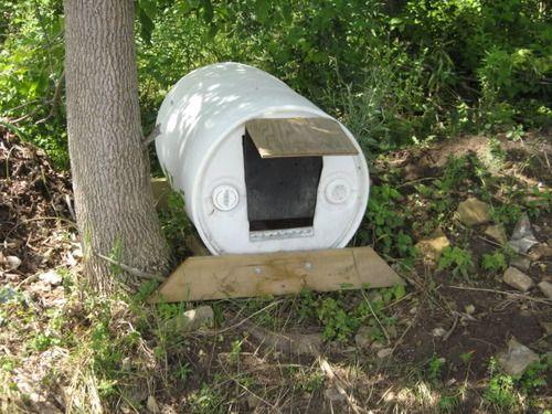 Tethering 101 Crazy Old Dog Lady Dogs Dog Houses Barrel Dog House