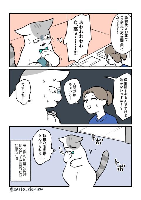 清水めりぃ 猫マンガ描いてます On Twitter 漫画 猫 漫画 マンガ