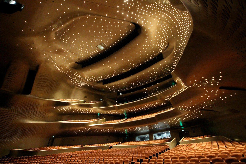 картинки современных театров многих цирков