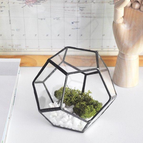 Zetaglass - Terrario dodecaedro 01