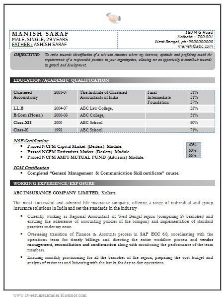 Best Chartered Accountant Resume Sample Doc with Experience 1
