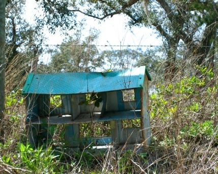 Tin dollhouse abandoned :  State Road 419 abandoned-lost-toys