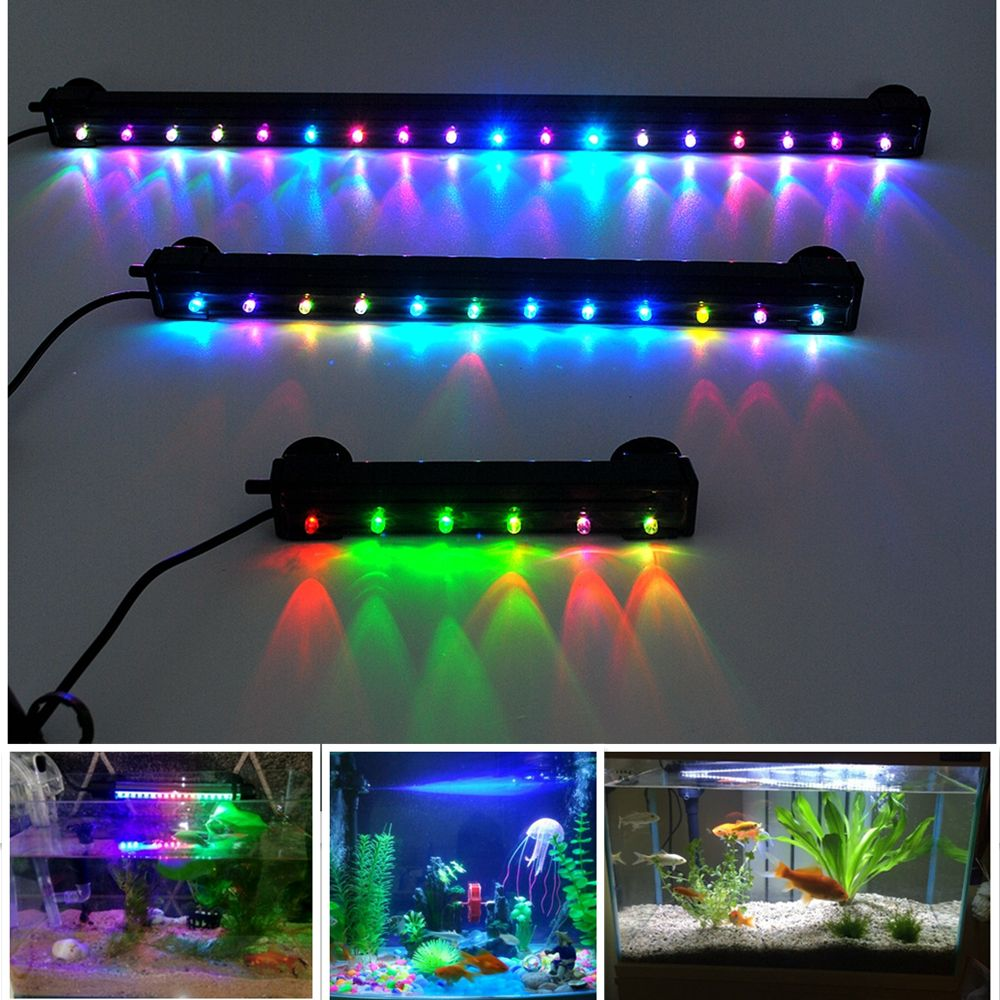 Aquarium lighting why do you need aquarium led lights for Fish tank lighting