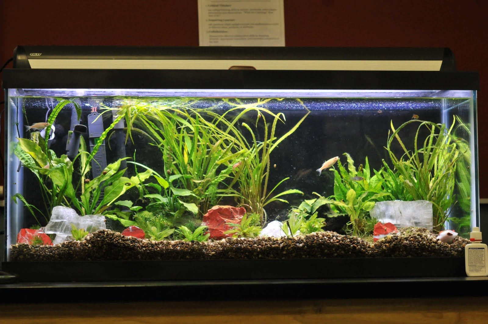 14 Splendid Diy Aquarium Furniture Ideas To Beautify Your Home Diy Aquarium Aquarium Design Diy Aquarium Stand