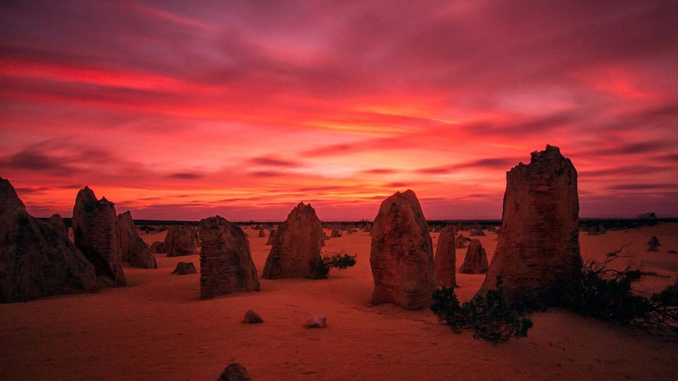 The red earth meets a fiery sky at the Pinnacles, WA, at sunset on 19 November.2016