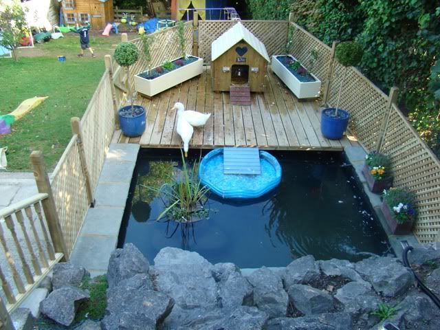 Duckling enclosures beautiful duck enclosures how to for Duck hutch ideas