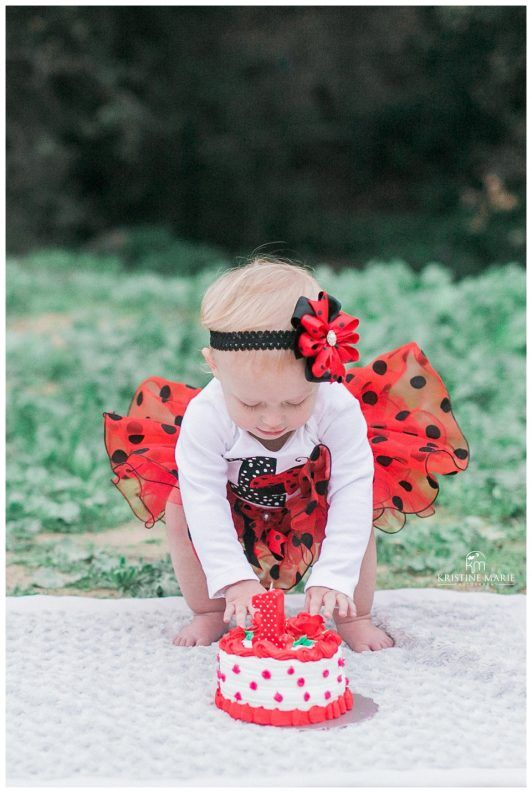 Little ladybug first birthday cake smash photo session outdoor baby pictures san diego family