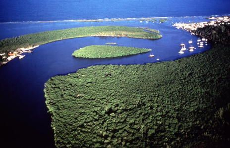 Discovery Coast Atlantic Forest Reserves - Brazil