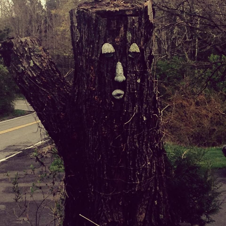 This tree seemed like he wanted a high five. #tree