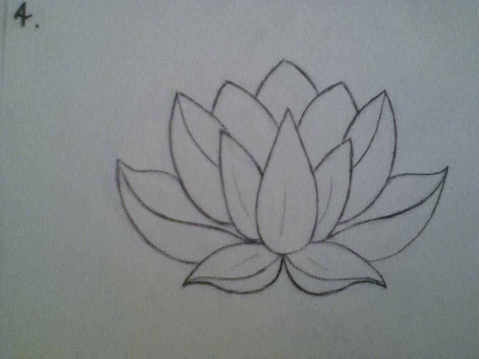 Lotus Flower Outline Realistic 28 Collection Of Small Lotus Flower