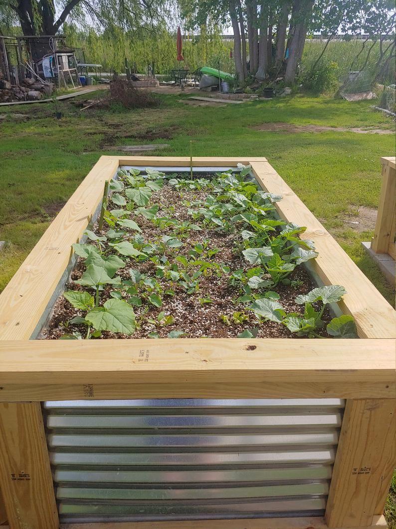 4X8 Raised Garden Bed Plans/Raised Planter Plans