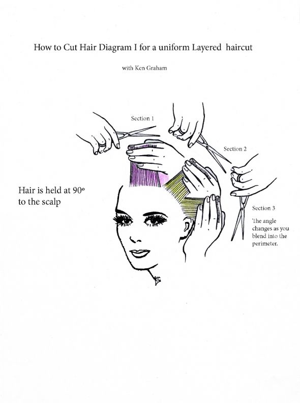 Pin On Hair Care And New Ideas