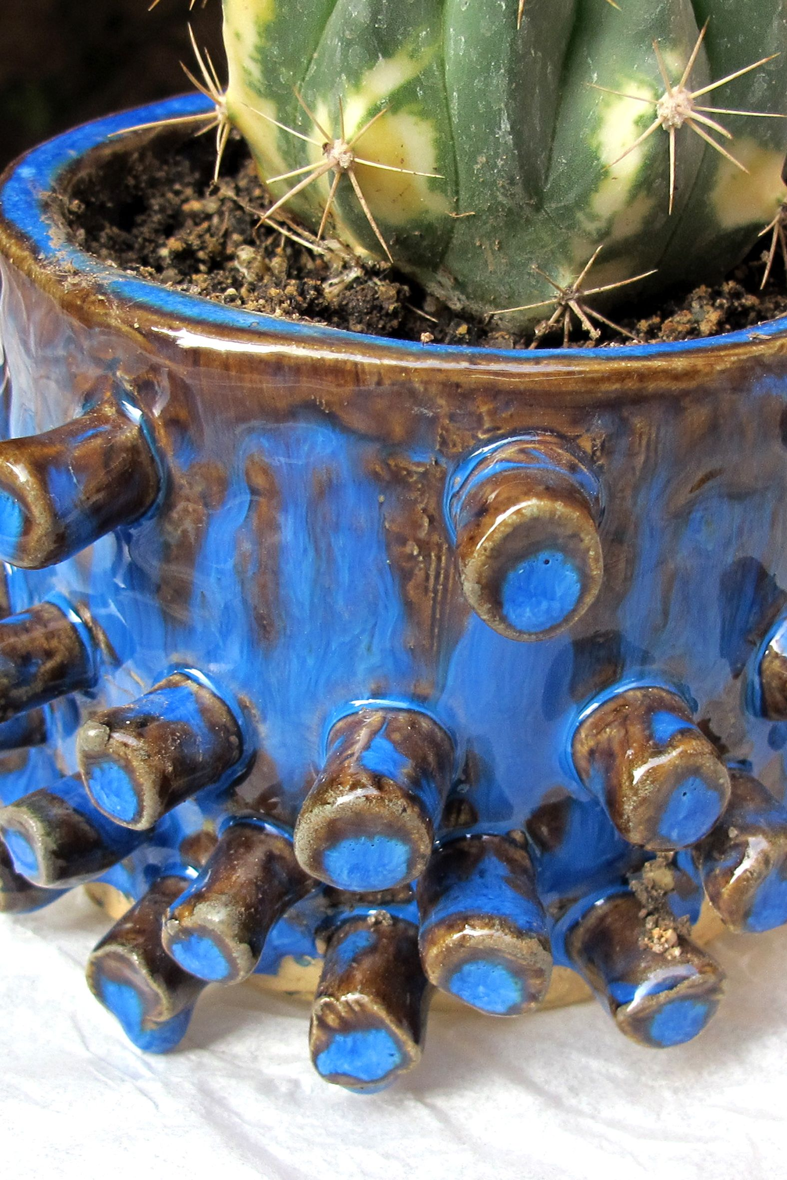 Detalle #ceramics #pottery #handmade #chile #carlospucci #latinamerica #homemade #blue #cactus #suculenta #octopus
