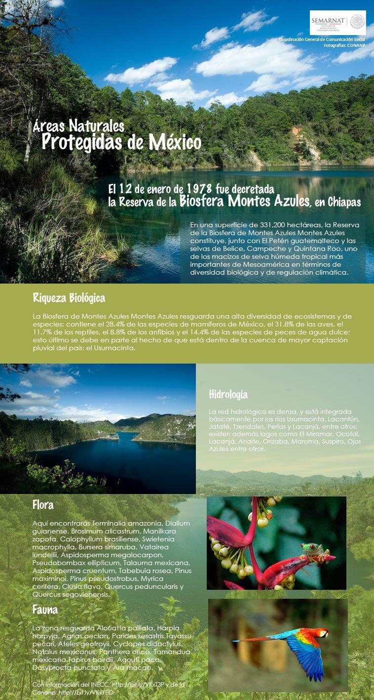 Tipos de areas naturales protegidas